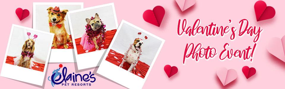 Valentine's Day Photo Event
